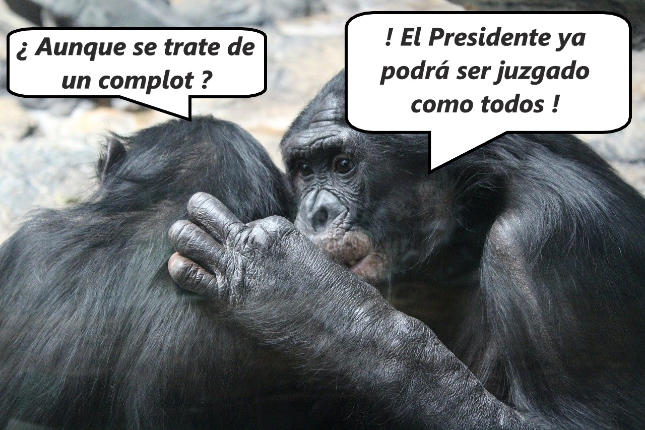 fuero presidencial
