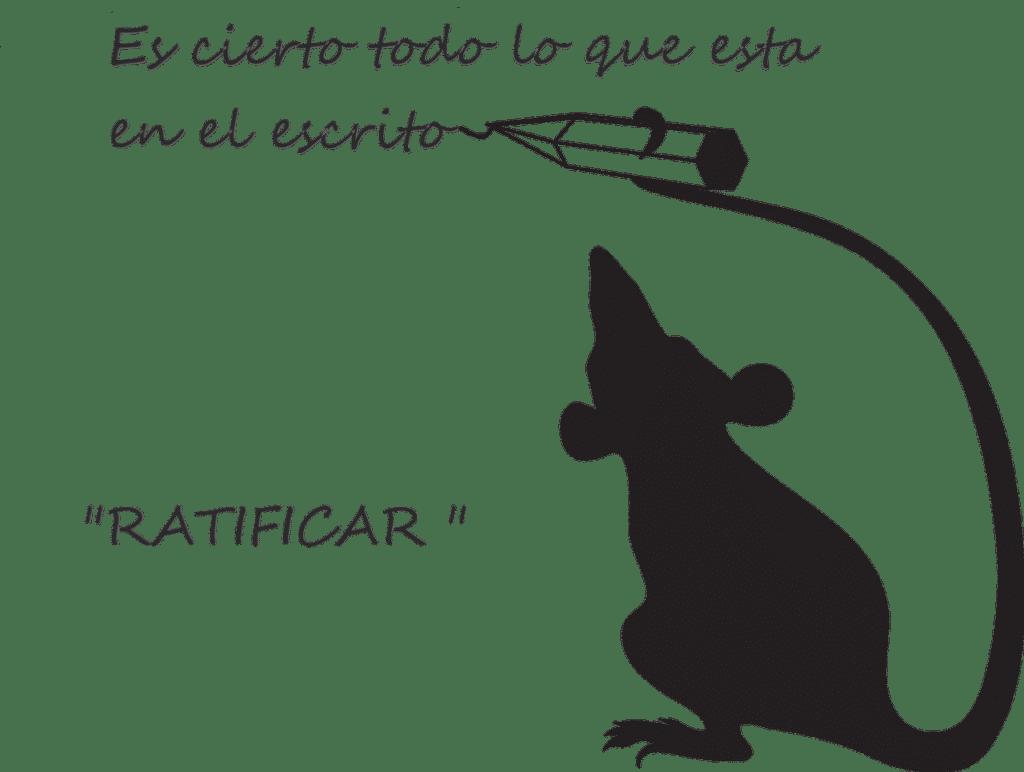 Una rata dando por cierto un documento. Ratificar