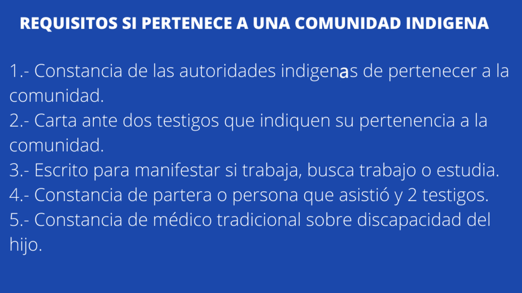 Requisiton para obtener ayuda para padre o madre soltera para persona indigena en México